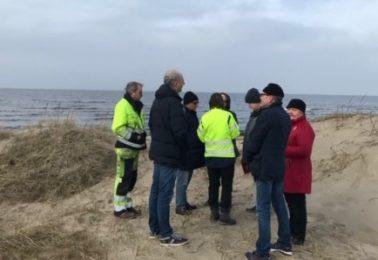 rapport-fran-styrelsemotet-i-mars-2019